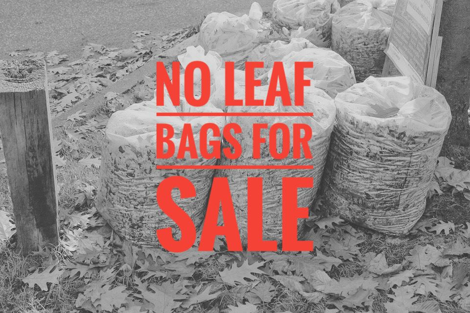 No Leaf Bags For Sale